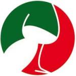 San-Simone_logo